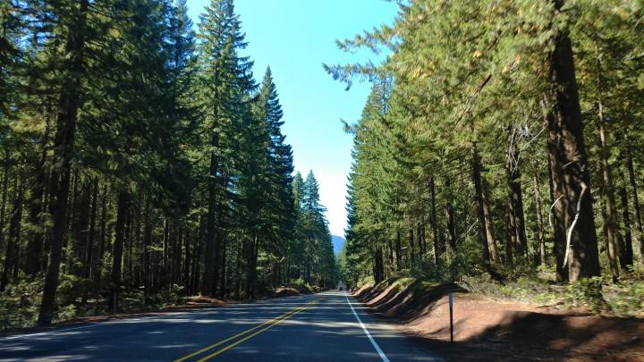 clear lake cutoff road